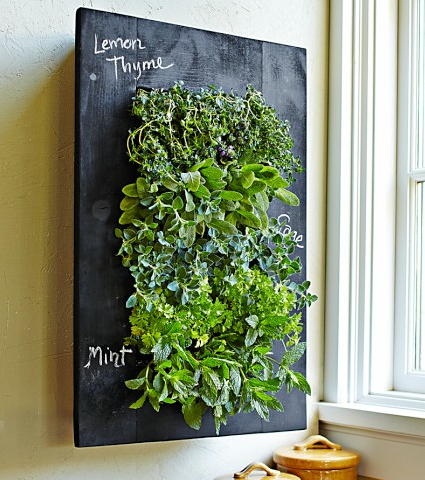 this vertical herb garden brings your kitchen to live while saving space so you can live small... 10 spaces plus an adorable chalkboard frame allows you to keep your new herbs freshly labeled.